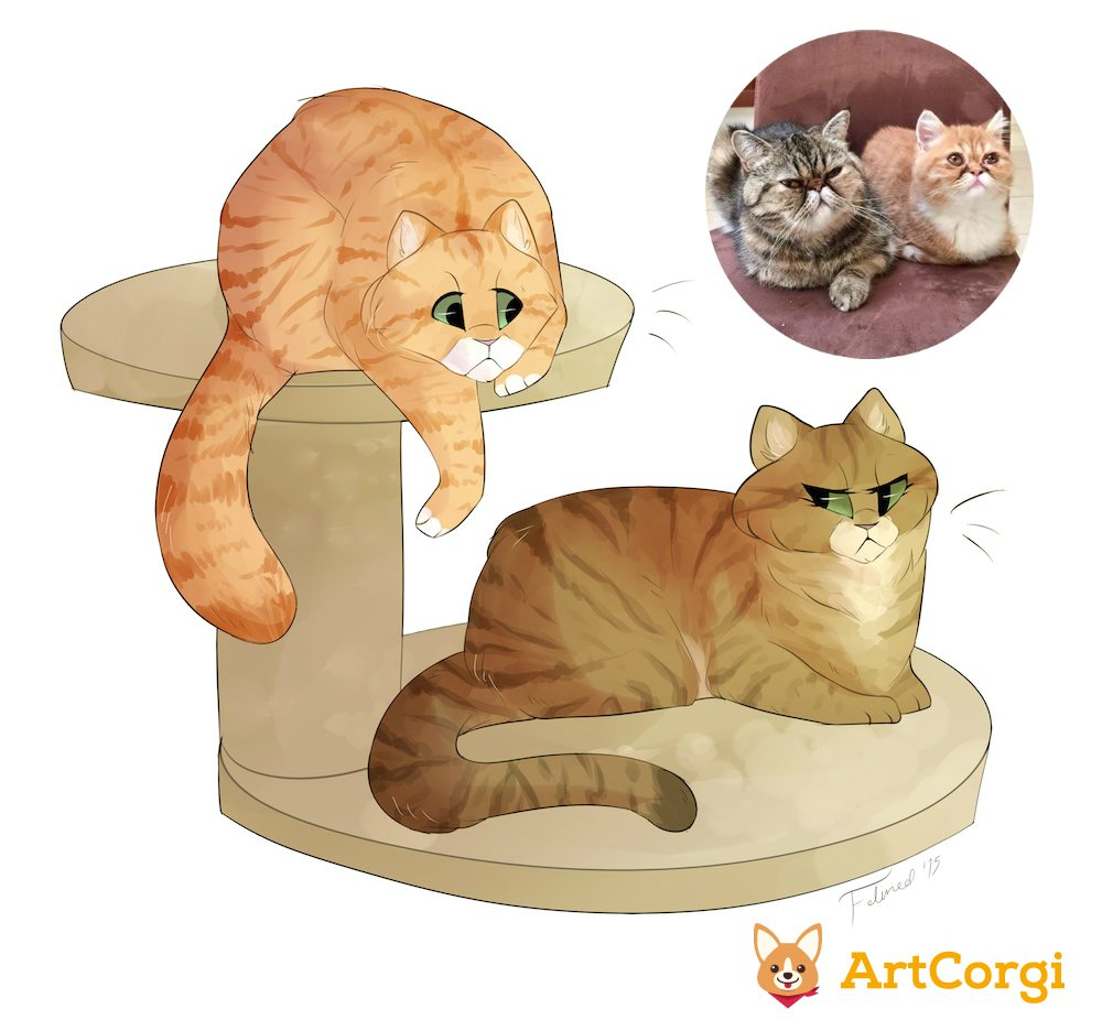 ArtCorgi Cat Commission Before and After by Felined