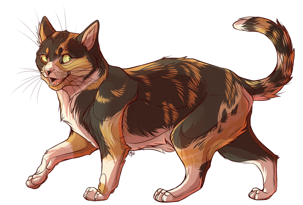 Cartoon Style Illustration of Fluffy the Cat by El Gato Iberico