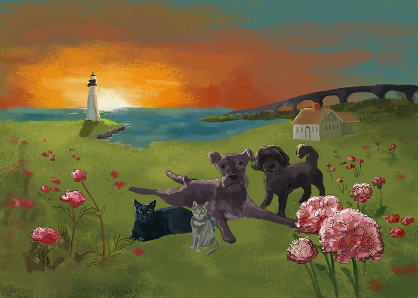 Draft- Pet Portrait Set at the Lighthouse by Studio Catawampus