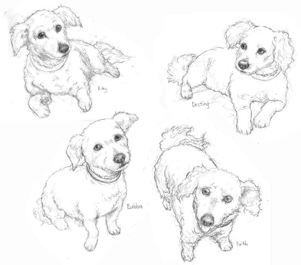 Draft Dog Portrait by Feralkith