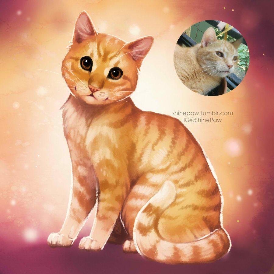 Pet Portrait Sample by Nickol Martin