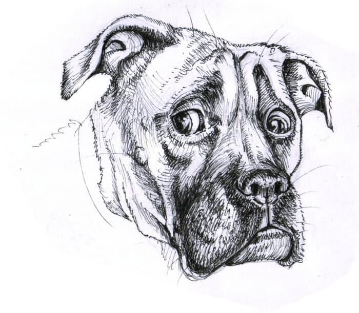 BenDX black and white ink scenes commission sample realistic shading - ArtCorgi