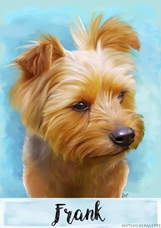 ArtCorgi - Cute Pet portrait commissions by MythicalPalette 2