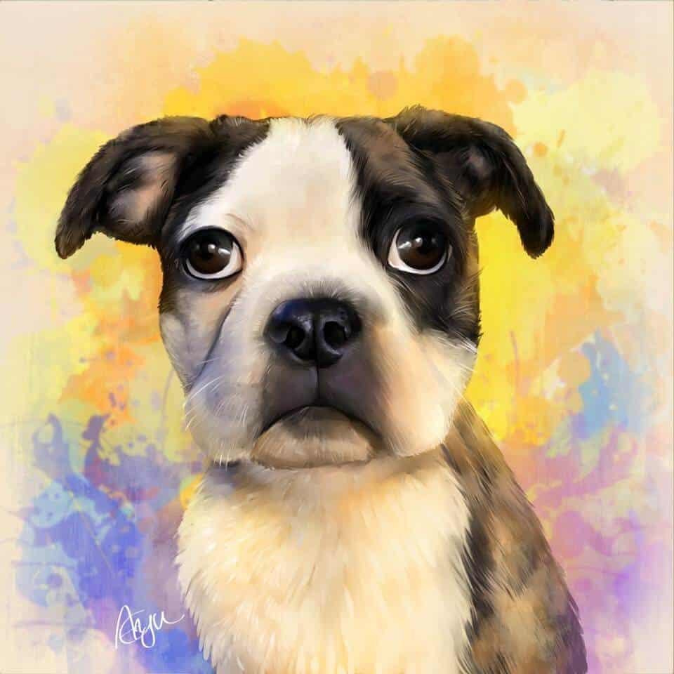 ArtCorgi - Cute Pet portrait commissions by MythicalPalette