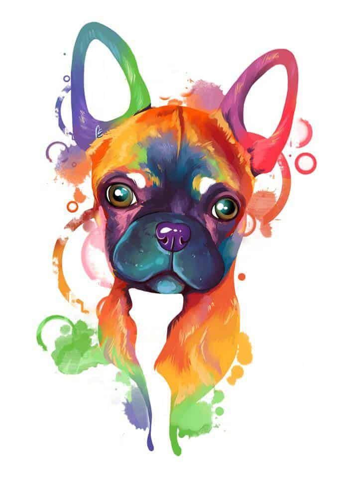 ArtCorgi - Rainbow Pet portrait commissions by Aeryn