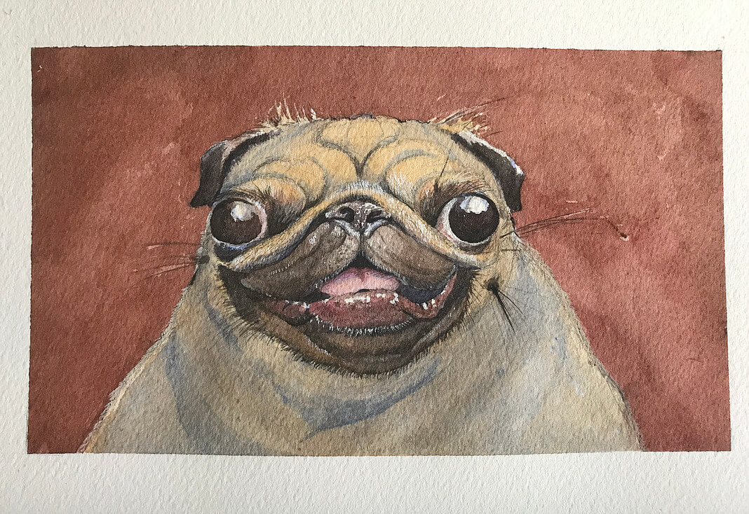 ArtCorgi - Watercolor and ink portraits by BenKleinArt featuring a pug