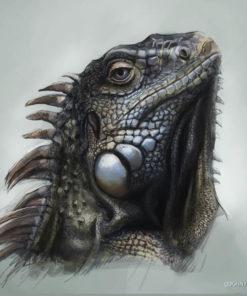 ArtCorgi - Pet and animal portraits by JohnyKatoArt featuring an iguana