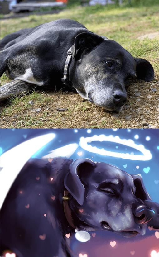 ArtCorgi - Pet Portraits by Danji commission sample featuring a dog