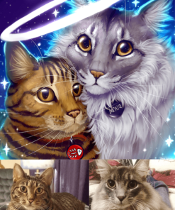 ArtCorgi - Pet Portraits by Danji commission sample featuring two cats